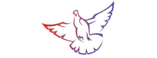 dove-main