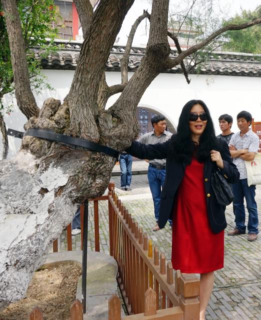 Huaian-2015-15