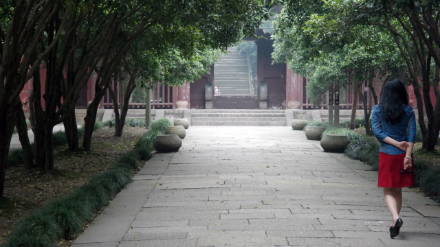 Shaoxing-26