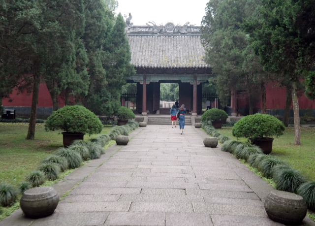 Shaoxing-29
